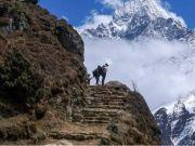 数百登山者被困喜马拉雅山 尼泊尔旅游局正式回应
