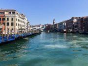 隔离之下,威尼斯河道变清出现海豚