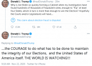 """特朗普发推:发现数十万张欺诈选票,足以""""扭转""""至少四个州"""