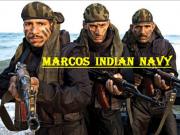 印媒:印度三军特种部队被部署到班公湖地区