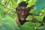 """男孩长相返祖只吃水果,被村民当""""猴子""""霸凌,让人心碎"""