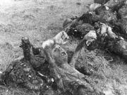纳粹集中营真实焚尸:遍地死尸 实行肉体消灭!