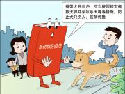 """除了""""遛狗要系绳"""",5月1日起这些法规也开始施行"""