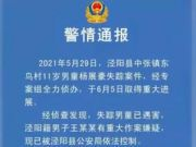 陕西11岁男孩买雪糕后遇害,凶手为同村72岁老人,作案动机公布