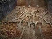 古代帝王用活人殉葬,那活人在墓穴中能活多久?你可能猜不到