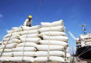 印度产大米进口量飙涨3000多倍 越南展开调查