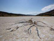 美国西部持续出现高温!将影响超4000万人,或持续至9月