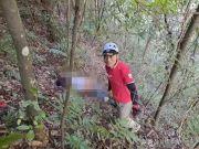 男子进山抓地雷蜂失联 3 天,被找到时已不幸身亡,身上有三只蜂还在蛰