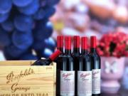 外媒:中国打击澳葡萄酒倾销
